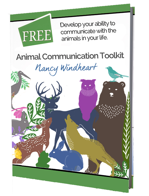 Animal Communication with Nancy Windheart