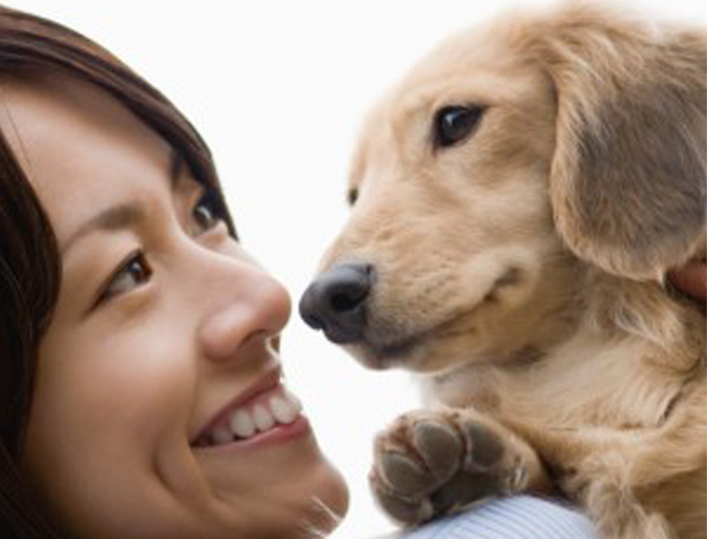 Deepening Animal Communication Online Class (Level 2)