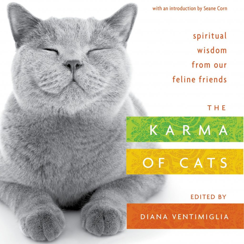 karma-of-cats-book