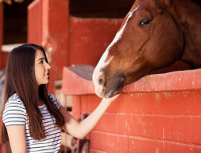 Beginning Animal Communication Online Class