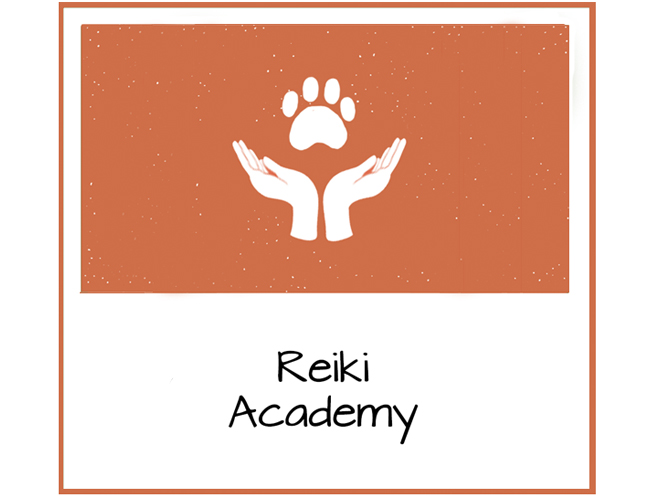 Reiki Level 2 for People and Animals