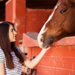Beginning Animal Communication Online Class (Level 1)